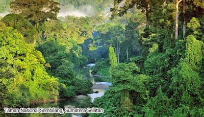 Taman Nasional Sembilang