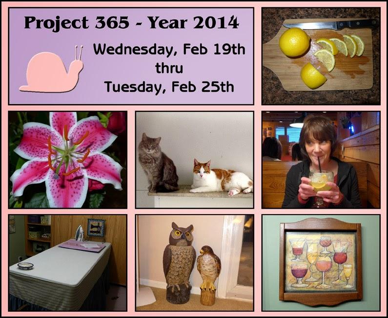 project 365, lilies, photography, scrapbooking, digital scrapbooking