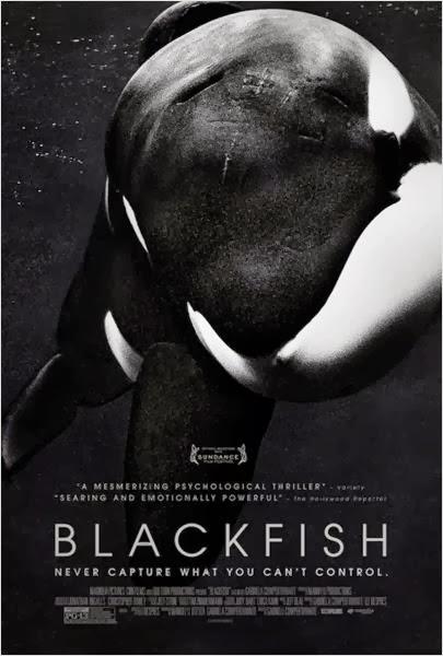 Blackfish Fúria Animal Legendado