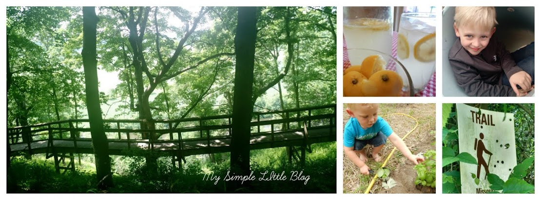 My Simple Little Blog