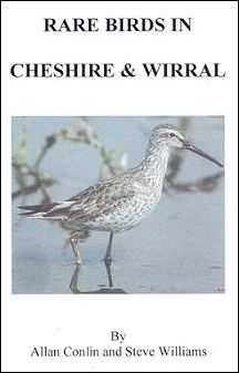 RARE BIRDS IN CHESHIRE AND WIRRAL