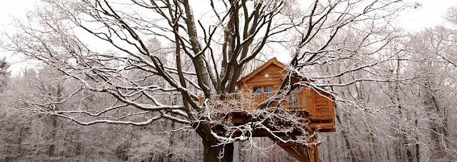 snow, winter, treehouse