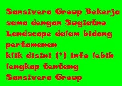 Sansivera Group