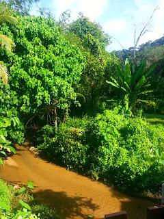 Kathu Waterfall- Phuket