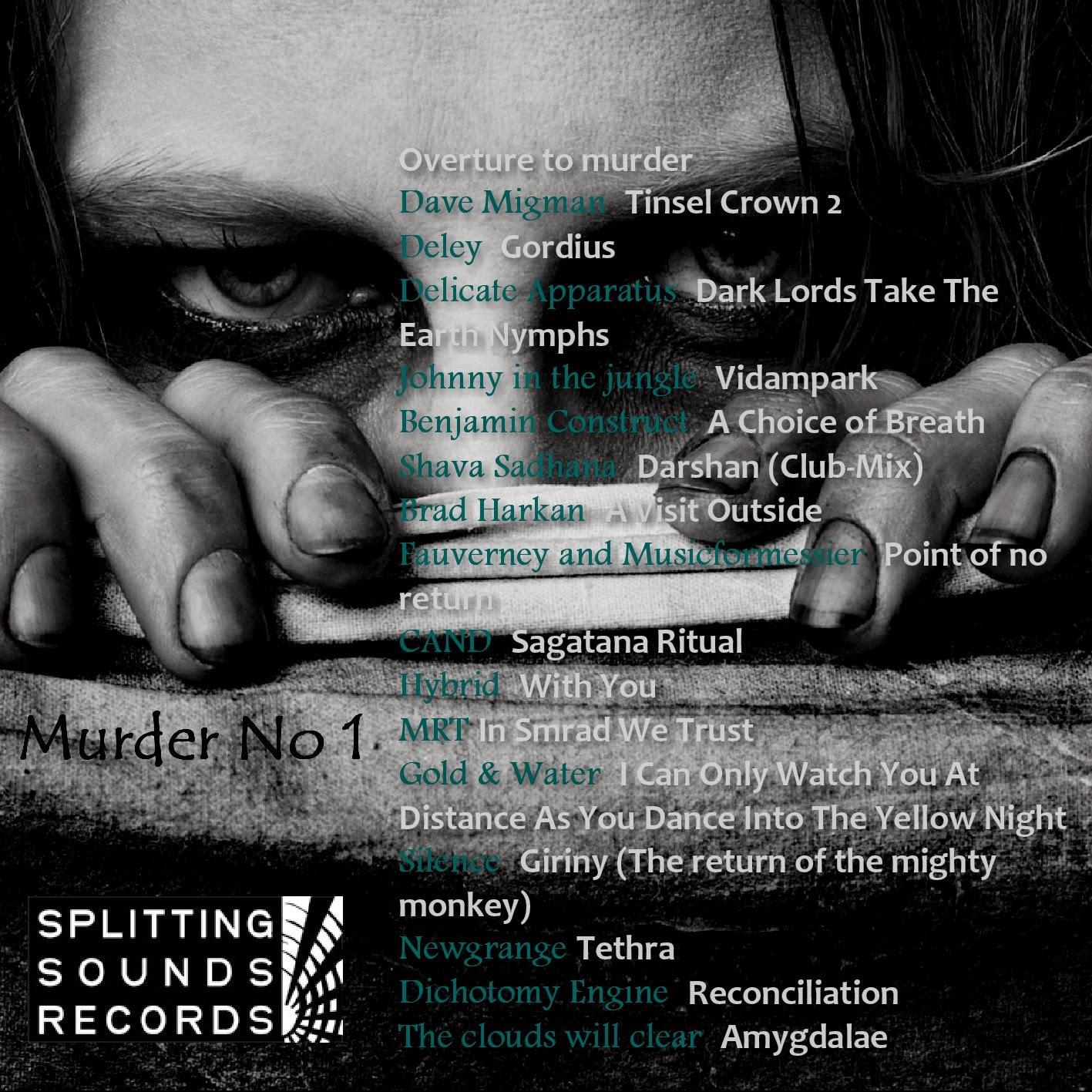 Chaosphere Vol. 2 - Sleepwalk To Murder (murder No 1)postrock noise drone ambient experimental