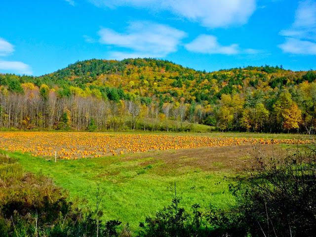 Vermont, Winslow Farms