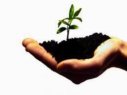 """Contoh Khutbah Singkat """" Gerakan Melestarikan Lingkungan Hidup """""""