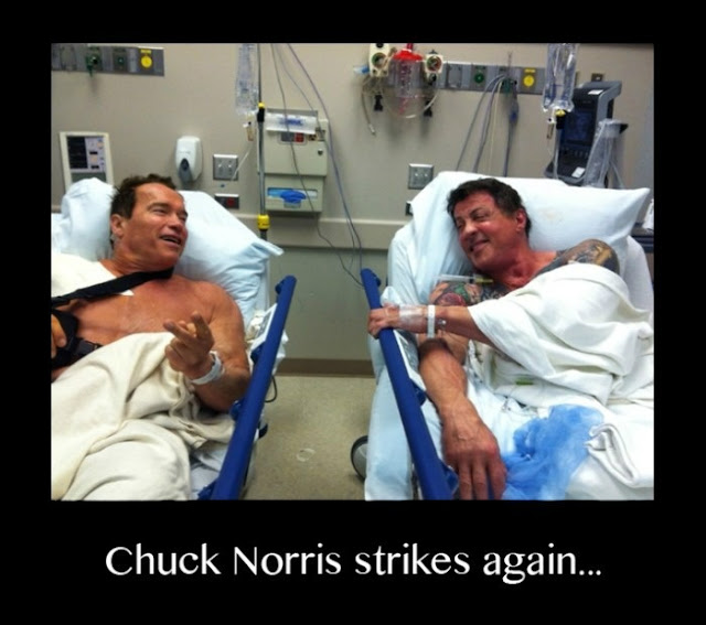 Don't mess with Chuck Norris
