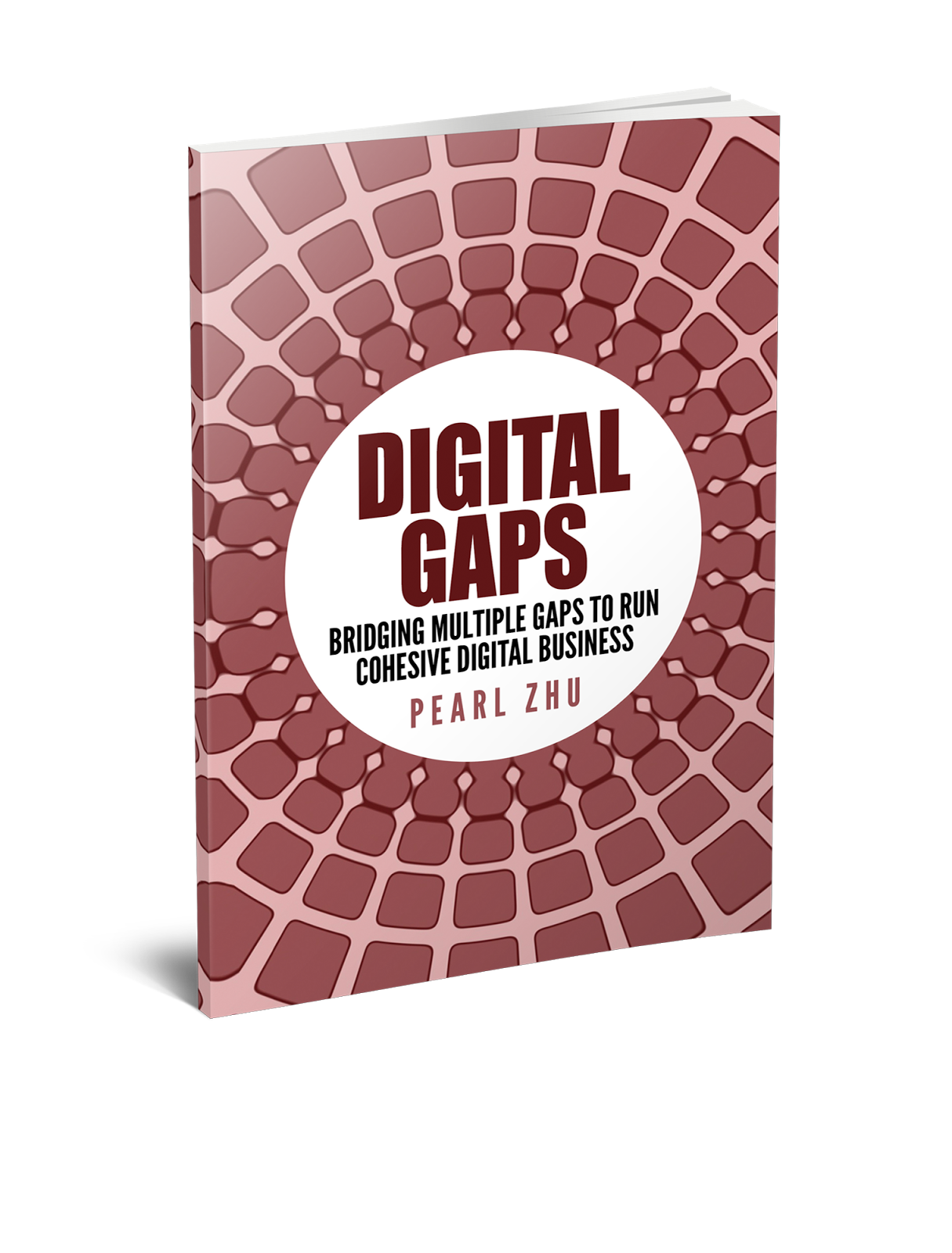 Digital Gaps
