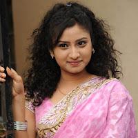 Vishnu priya latest photos in pink saree