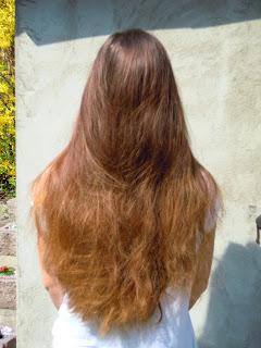 Mój problem włosowy- suchość