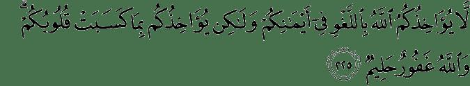 Surat Al-Baqarah Ayat 225