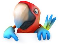 Image: Parrot