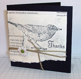 Thank You Card with bird stamp