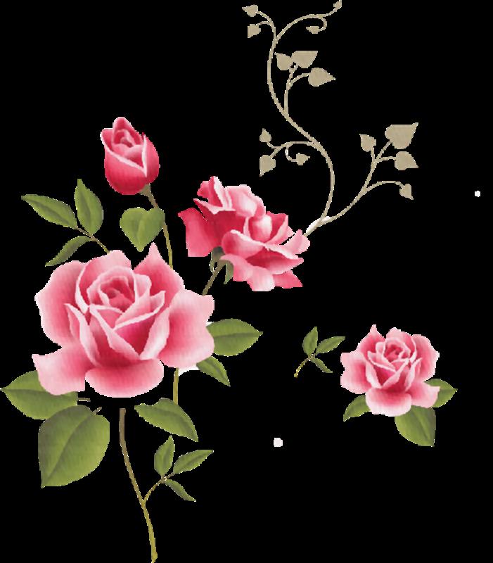Cosas Para Photoscape Imagenes Para Photoscape De Flores Y Plantas 16
