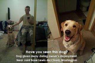 Solider's Dog Given Away While Deployed