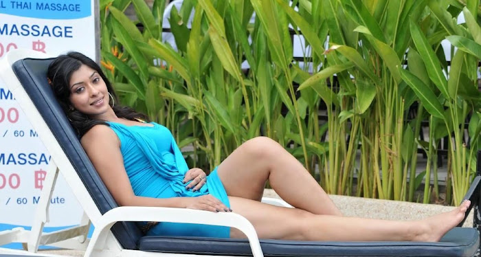 spicy tollywood payal hosh from movie mr.rascal unseen pics