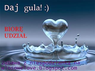 wlosowelove.blogspot.com/2013/12/styczniowe-wyzwanie-daj-gula-d.html