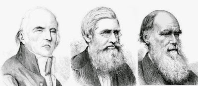 PENJELASAN TEORI EVOLUSI OLEH LAMMARCK WALLACE DARWIN