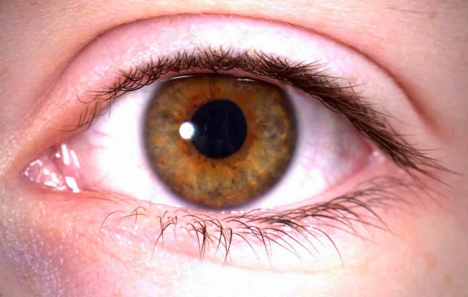 Protección de los ojos