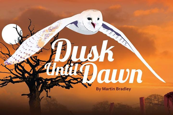 Dusk Until Dawn - Cover image