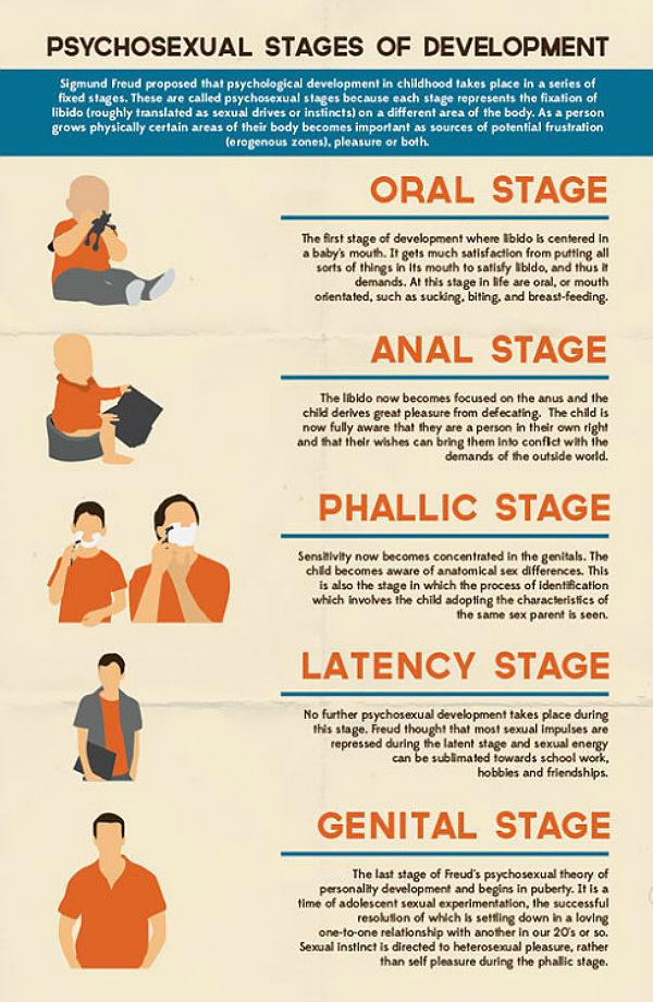 stadiile dezvoltarii psihosexuale sigmund freud