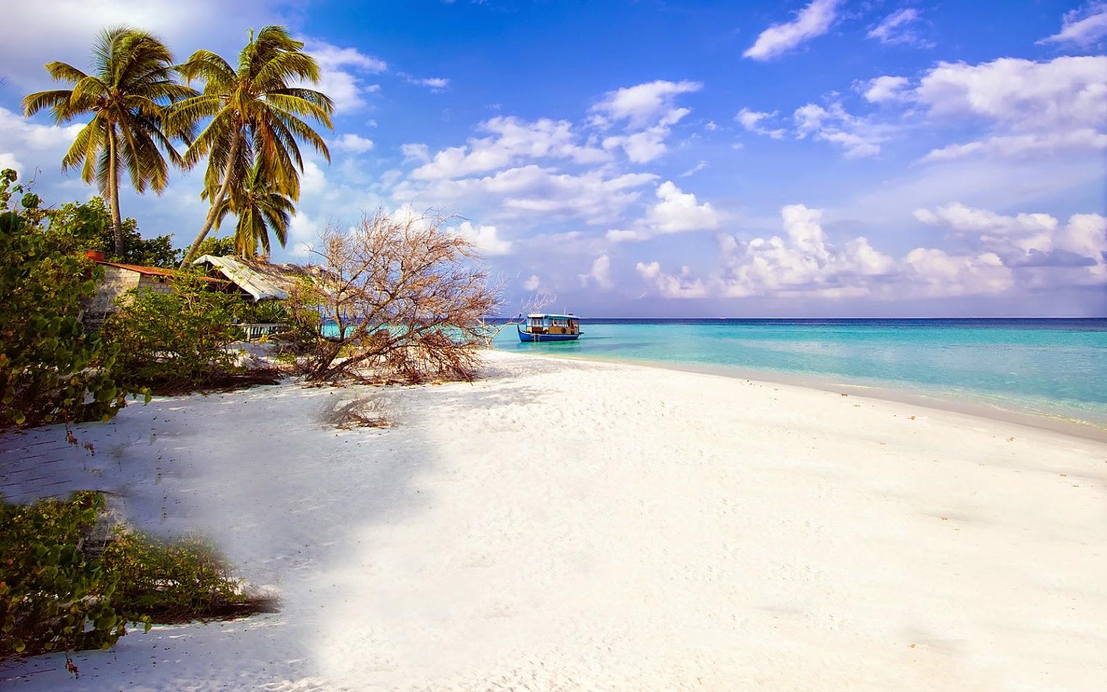 pulau seribu - inilah 5 Wisata Bawah Laut Indonesia Terpopuler yang harus Anda kunjungi.