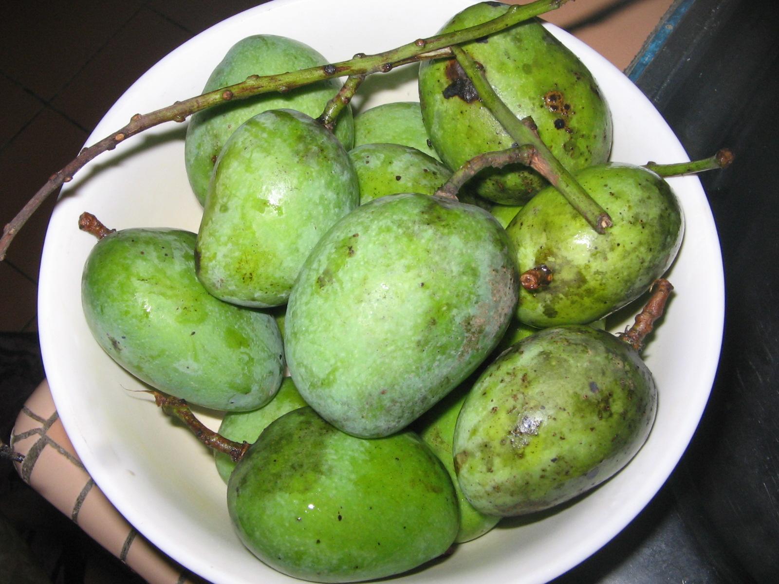 Jeruk Mangga..