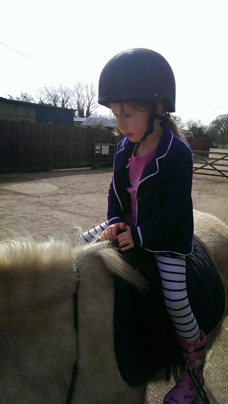 equestrian pursuits