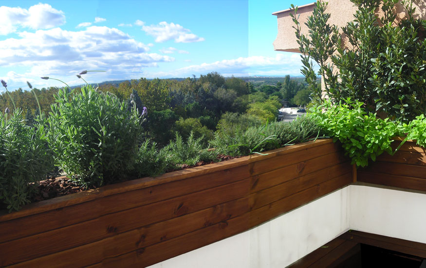 Missjardin dise o de jard n comestible en tico - Jardin en terraza pequena ...