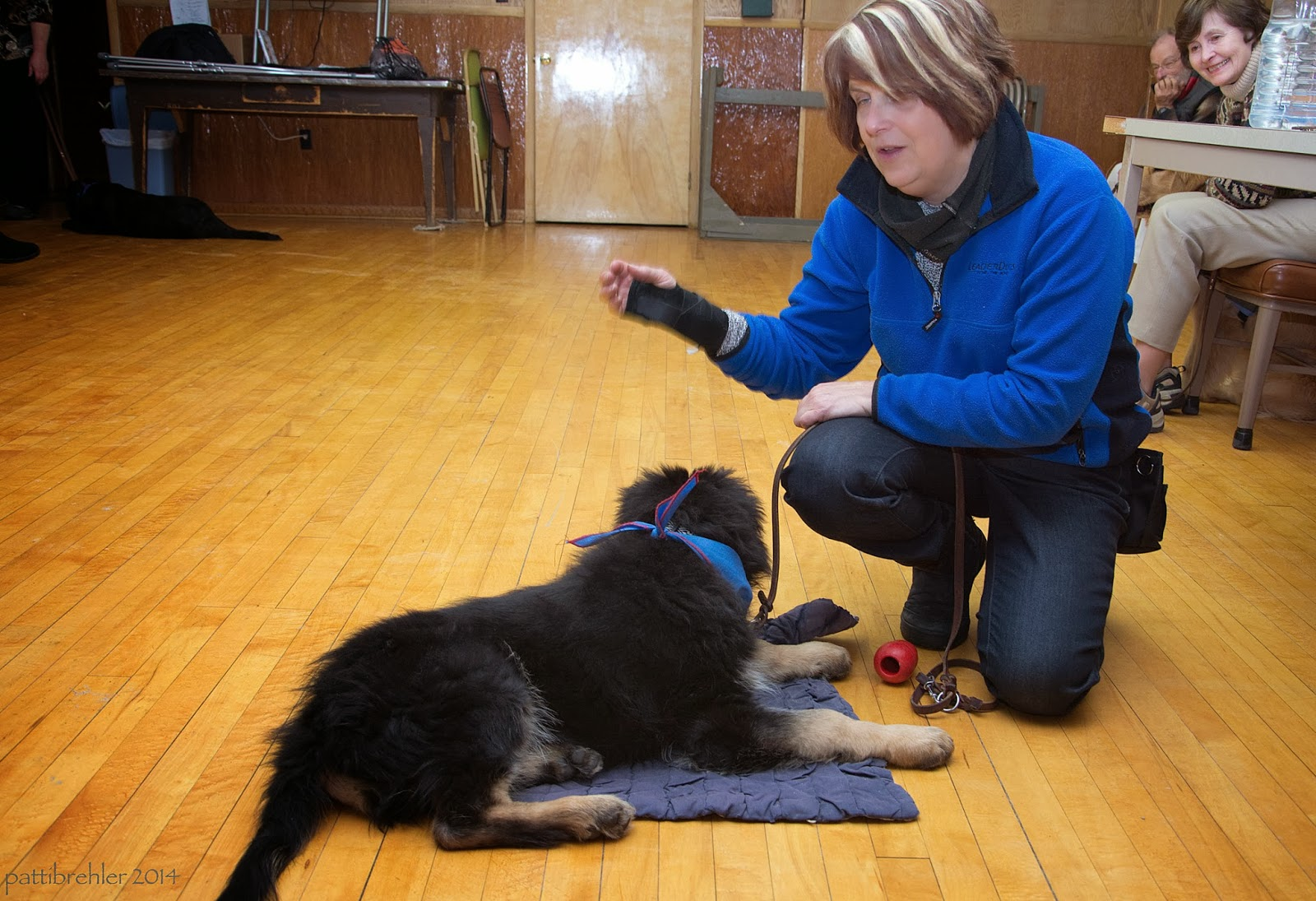"A woman dressed in a blue fleece jacket and blue jeans is kneeling on one knee on a wood floor facing a small german shepherd puppy. He is lying on a blue ""mat"" and facking her. She is gestering with her right hand, which has a black wrist brace on it, and is holding the pup's brown leather leash with her left hand at her right knee. A man and a woman are in the background on the right side smiling and watching the two."
