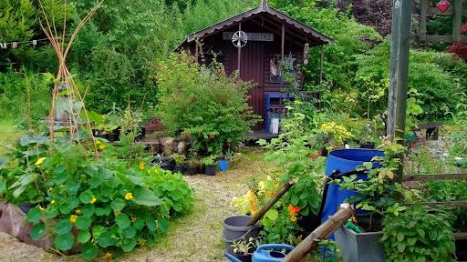 Cottage garden house ideas