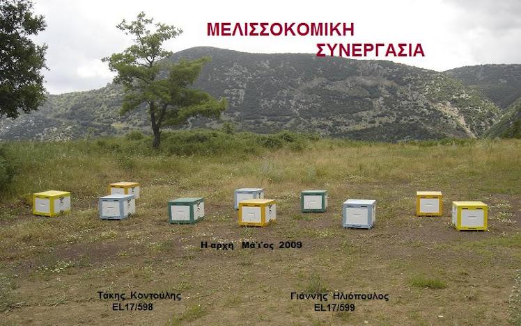 ΜΕΛΙΣΣΟΚΟΜΙΚΗ ΣΥΝΕΡΓΑΣΙΑ