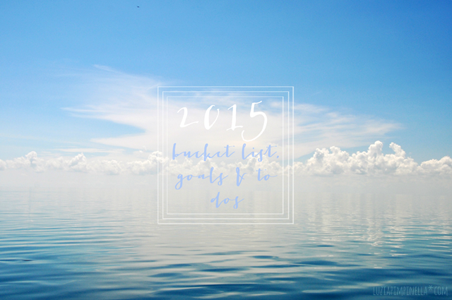 bucket list, goals & to dos 2015 | luzia pimpinella