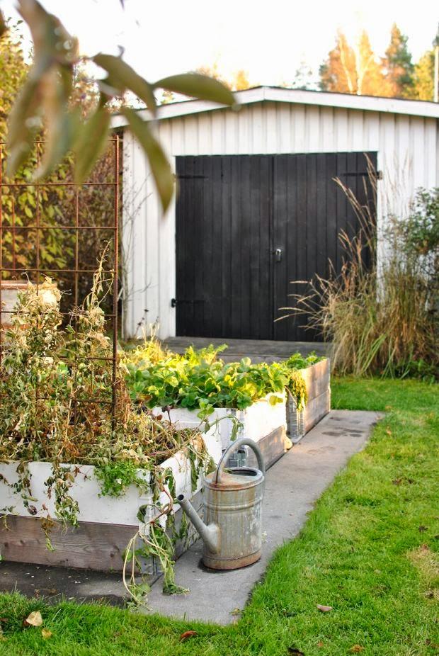 höst trädgård pallkragar