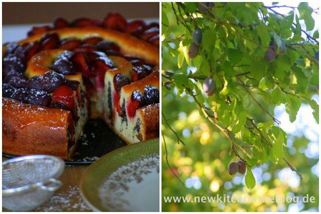 Zwetschgenkuchen mit Mohnfüllung und Marzipan