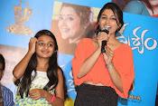 Drushyam movie premier show-thumbnail-5