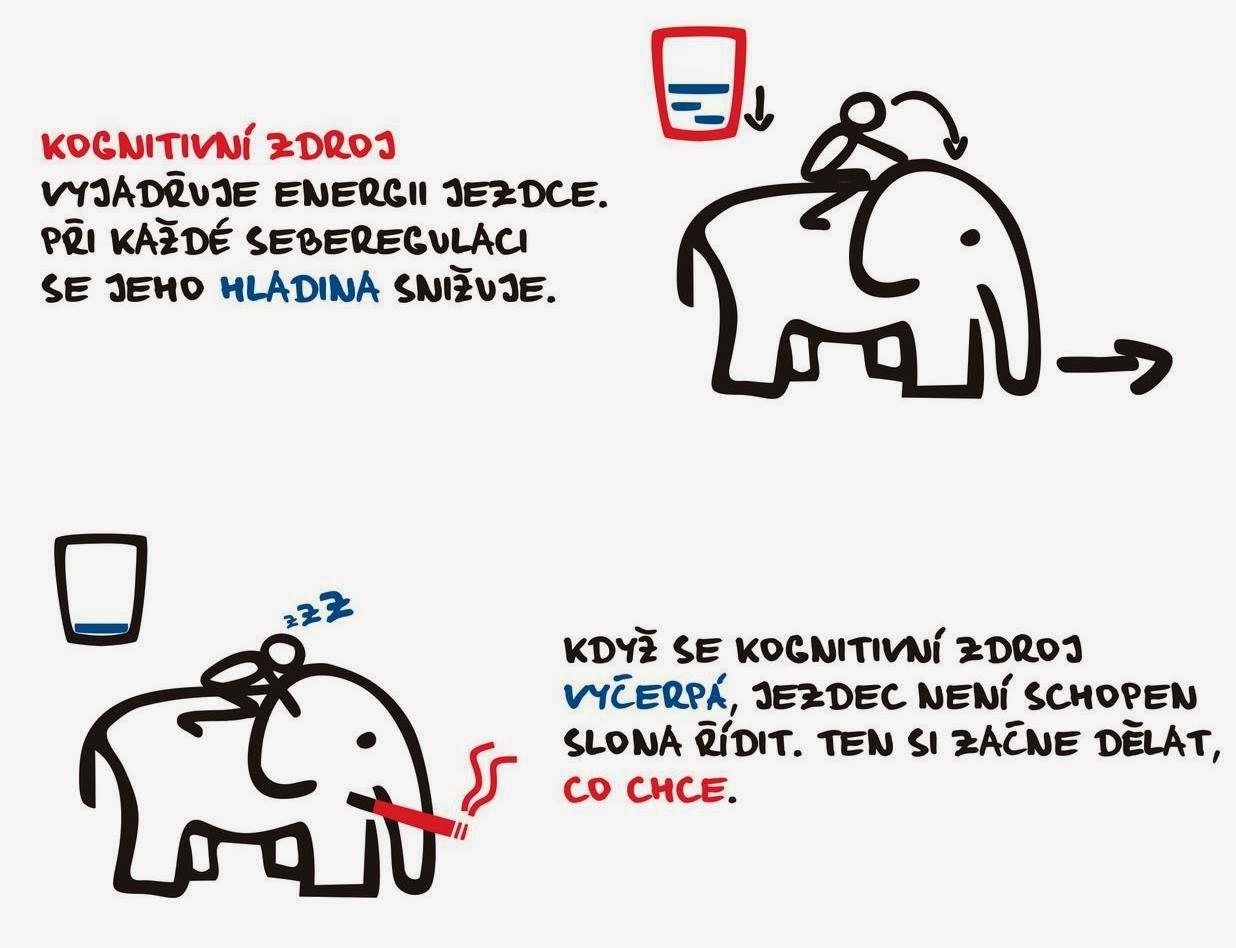 Jezdec a slon. [LUDWIG, 2013]