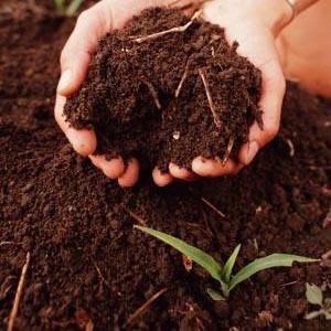 usos básicos de la tierra como material para la construcción: