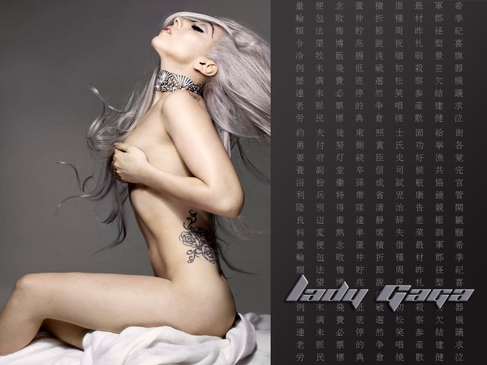 http://2.bp.blogspot.com/-kITswADBX1c/TtOY30HxtMI/AAAAAAAAFLg/ZFlMJLE_tbQ/s1600/sploogeblog_lady_gaga_naked_topless_castsuit_wallpaper_03.jpg