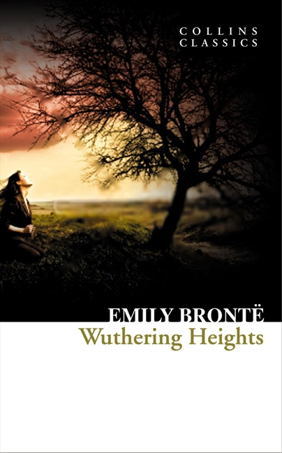 Stupidity in wuthering heights