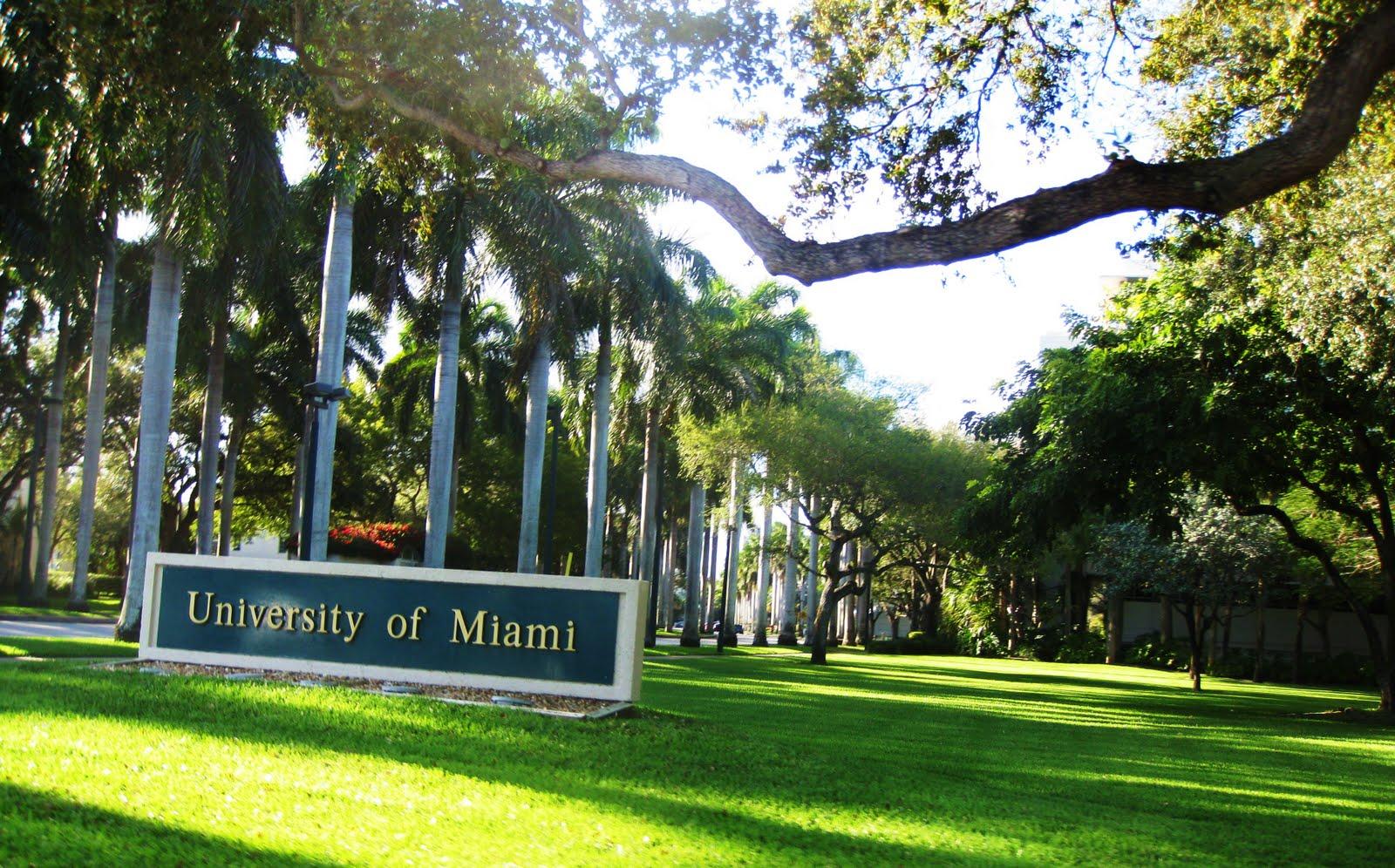 A university in miami