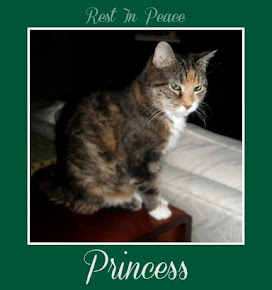 Princess from Prancer Pie