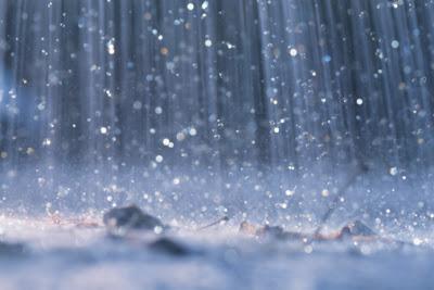 سر رائحه الارض التي تظهر بعد المطر
