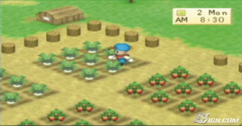 COLLEGE LIFE: Harvest Moon : Back to Nature is back !!!!!
