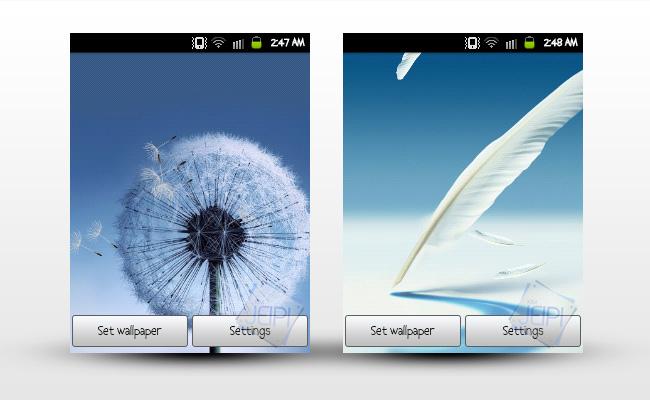 Live Wallpaper Galaxy S3 Dandelion
