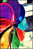Colorful of liFe
