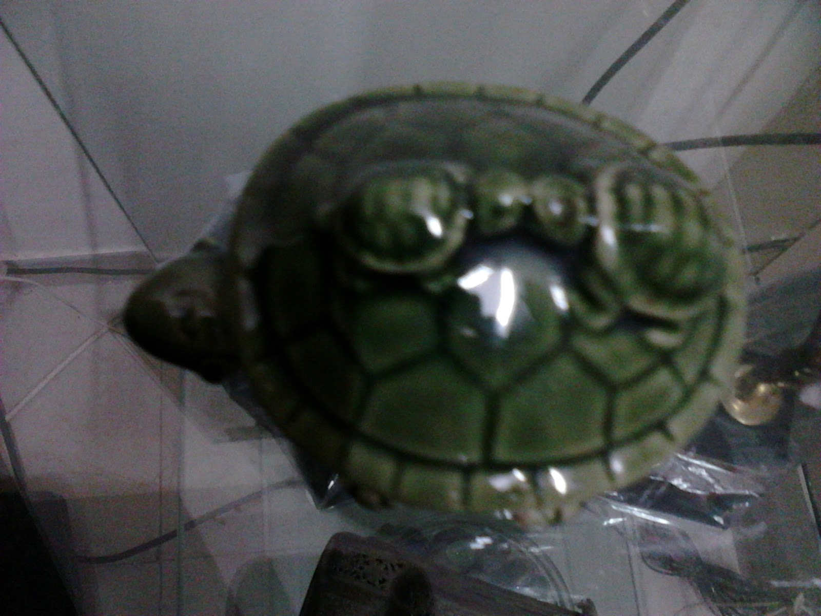 Feng Shui Turtle How to select Turtle and Where to place Turtle Best ...