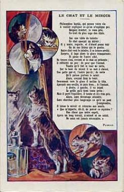 Anthologie de la po sie fran aise le chat et le miroir de for Miroir des chats