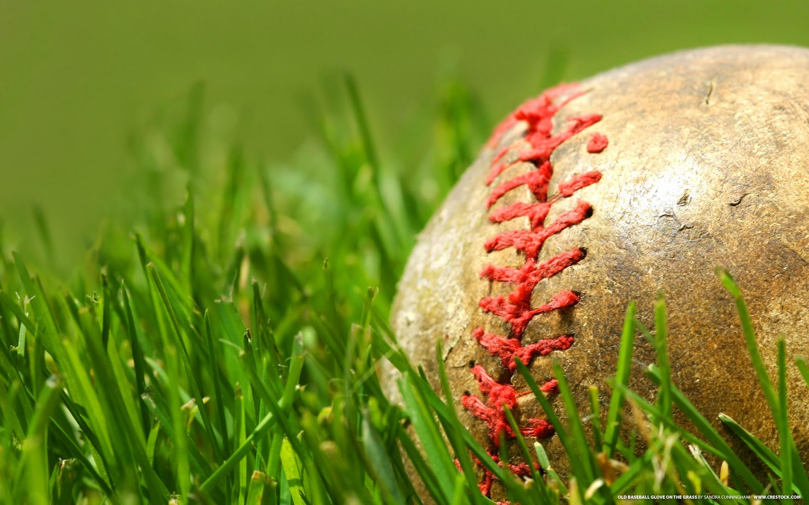 http://2.bp.blogspot.com/-kK4CNTZVw1w/TpAftsqmxQI/AAAAAAAACZU/i_4un5ZkH7E/s1600/The-best-top-desktop-baseball-wallpapers-16-ball-in-the-grass-wallpaper.jpg